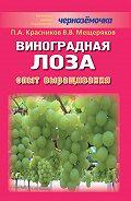 Петр Красников, В. Мещеряков - Виноградная лоза. Опыт выращивания