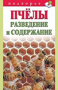 Тамара Руцкая - Пчёлы. Разведение и содержание