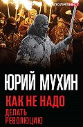Юрий Мухин -Как не надо делать революцию