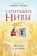 Андрей Ткачев - Созревшие нивы. Жизнь в Церкви