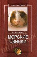 Кристина Александровна Кулагина - Морские свинки