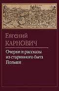 Евгений Карнович - Северские послы