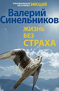 Валерий Синельников -Жизнь без страха