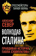 Александр Север - Волкодав Сталина. Правдивая история Павла Судоплатова