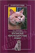 Олеся Пухова - Британские короткошерстные кошки