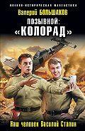 Валерий Петрович Большаков -Позывной: «Колорад». Наш человек Василий Сталин