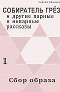 Сергей Саканский - Сбор образа (сборник)