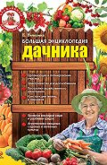 Елена Вечерина -Большая энциклопедия дачника