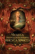 Владимир Бутромеев, В. Бутромеев - Чудеса Господа Бога нашего Иисуса Христа