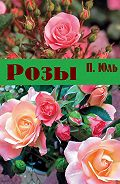 Петр Юль - Розы