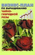 А. С. Бруйло -Бизнес-план по выращиванию чайно-гибридной розы