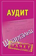 Николай Самсонов -Аудит. Шпаргалки