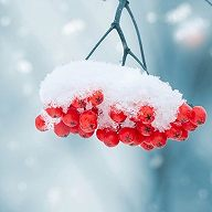 Ощущение зимы