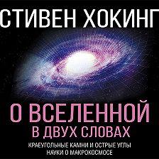 Стивен Хокинг - О Вселенной в двух словах. Краеугольные камни и острые углы науки о макрокосмосе