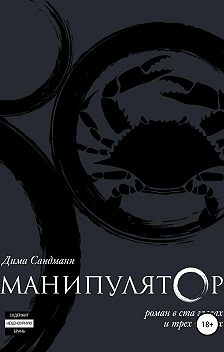 Дима Сандманн - Манипулятор. Глава 019. Финальный вариант