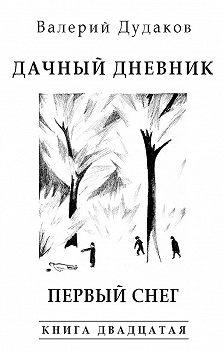 Валерий Дудаков - Дачный дневник. Первый снег