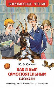 Юрий Сотник - Как я был самостоятельным (сборник)
