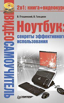 Виктор Гольцман - Ноутбук: секреты эффективного использования