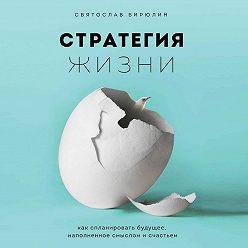 Святослав Бирюлин - Стратегия жизни. Как спланировать будущее, наполненное смыслом и счастьем