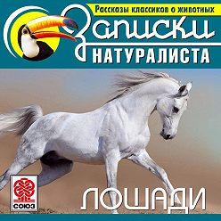 Коллектив авторов - Рассказы классиков о животных. Лошади