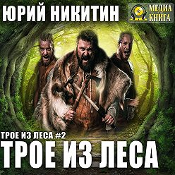 Юрий Никитин - Трое из Леса
