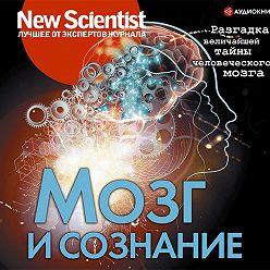 Сборник - Мозг и сознание. Разгадка величайшей тайны человеческого мозга