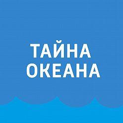 Павел Картаев - Бентический шторм