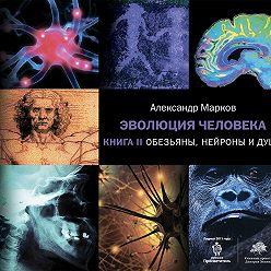 Александр Марков - Обезьяны, нейроны и душа