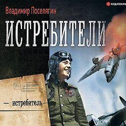 Владимир Поселягин - Я – истребитель