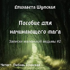 Елизавета Шумская - Пособие для начинающего мага