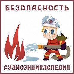 Нарине Айгистова - Безопасность