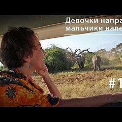 Евгения Тимонова - Девочки направо, мальчики налево: планирование семьи у африканских слонов