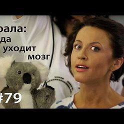 Евгения Тимонова - Коала: куда уходит мозг