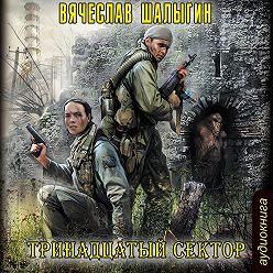 Вячеслав Шалыгин - Тринадцатый сектор