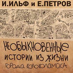 Илья Ильф - Необыкновенные истории из жизни города Колоколамска