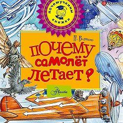 Петр Волцит - Почему самолет летает?