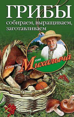 Николай Звонарев - Грибы. Собираем, выращиваем, заготавливаем