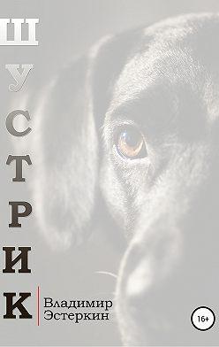Владимир Эстеркин - Шустрик