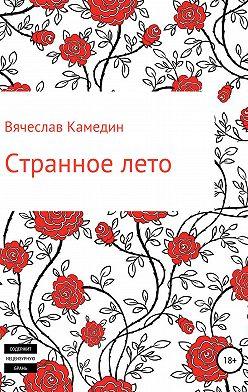 Вячеслав Камедин - Странное лето
