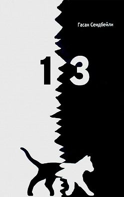 Гасан Сеидбейли II - 13 (сборник)
