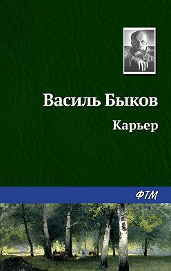 Василий Быков - Карьер
