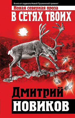 Дмитрий Новиков - В сетях Твоих
