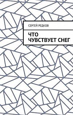Сергей Редков - Что чувствуетснег