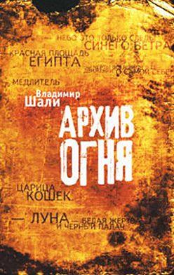 Владимир Шали - Архив огня