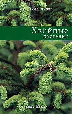 Лилиан Плотникова - Хвойные растения