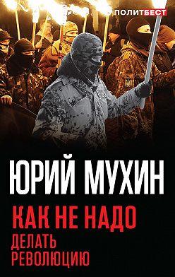 Юрий Мухин - Как не надо делать революцию