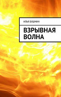 Илья Бушмин - Взрывная волна