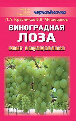 В. Мещеряков - Виноградная лоза. Опыт выращивания