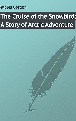 Gordon Stables - The Cruise of the Snowbird: A Story of Arctic Adventure