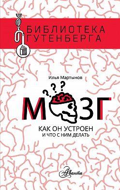 Илья Мартынов - Мозг. Как он устроен и что с ним делать